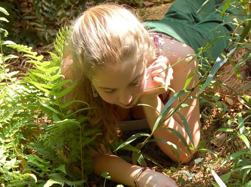 Μικρά μυστικά για τη διαμόρφωση του κήπου σας